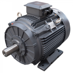 1.5KW TEC IE3 2 POLE CAST IRON B3 MOUNT AC MOTOR