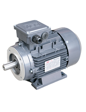 TEC CAST IRON 2 POLE AC MOTORS