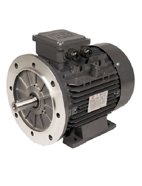 TEC CAST IRON 4 POLE AC MOTORS